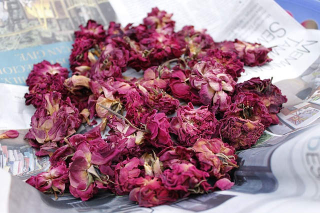 usušené kytky