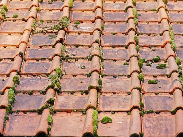 stará střecha
